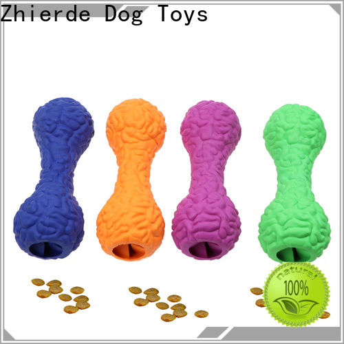 Zhierde latest food dispensing toy with good price for teething