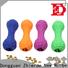 Zhierde popular dog food dispensing toy wholesale for pet