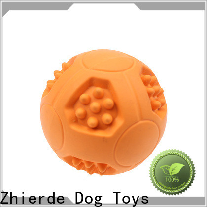 top dog food toys manufacturer for playing