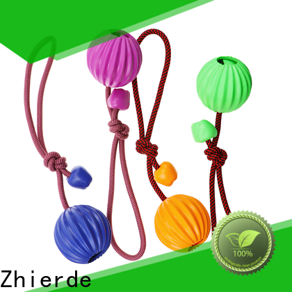 enjoyable dog rope chew toy supplier for training