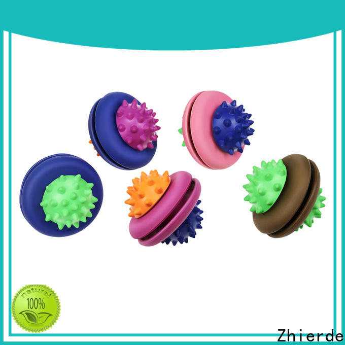 Zhierde latest food dispensing toy wholesale for teething