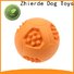 Zhierde high-quality dog food dispenser toy with good price for chewing