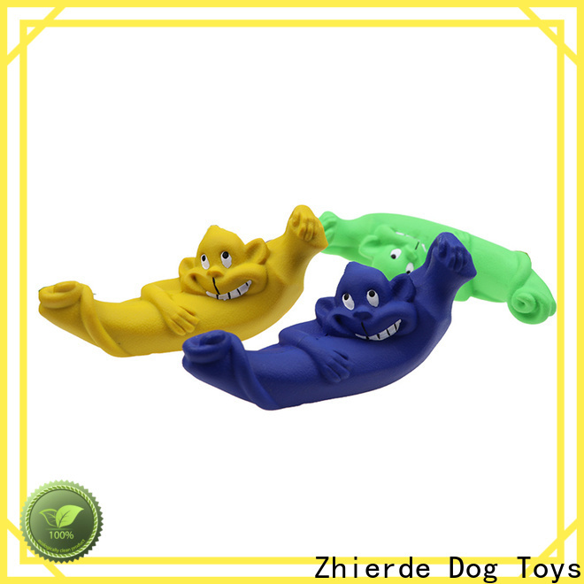 Zhierde creative indestructible dog toy suppliers for chewing